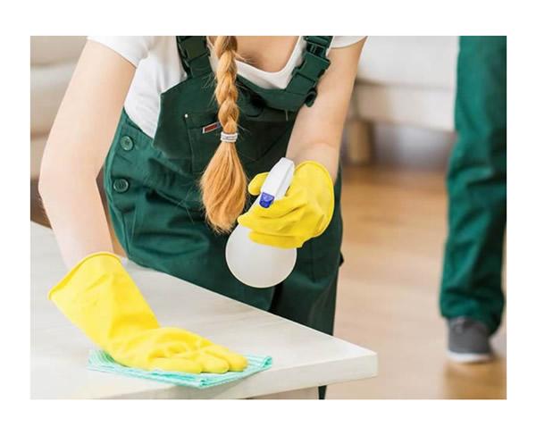 Reinigung in Haus, Wohnung oder im Büro